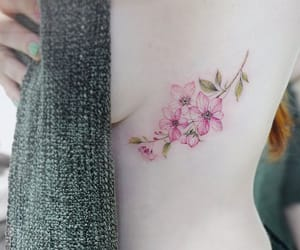 cherry blossoms, flowers, and ink image