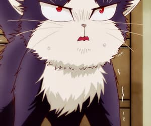 anime, cat, and cats image