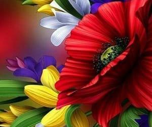 квіти, bonito+güzel+tatlı, and wallpapers+background image