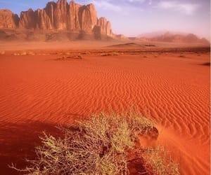 desert and landscape image