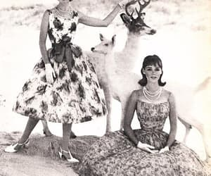 1960s, chiffon, and Prom image