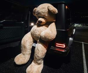 bear, big, and car image