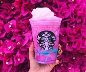 drink, starbucks, and pink image
