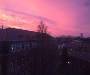 aesthetic, pink, and sunset image
