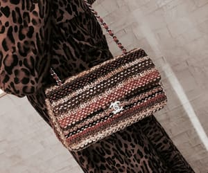 accessories, purse, and animal print image