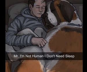 Connor, dbh, and Hank image