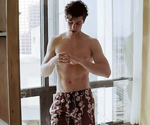 abs, gif, and shawn mendes image