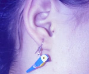 aesthetic, ear, and brincos image