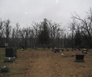 aesthetic, graveyard, and grunge image