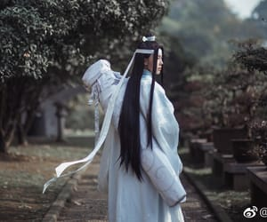 aesthetic, beauty, and lan zhan image