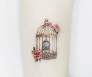 art, bird cage, and color image