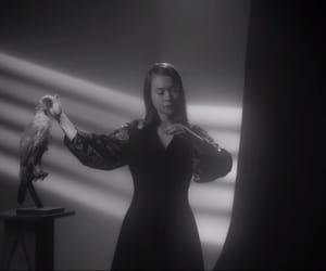 black and white, music, and mitski image
