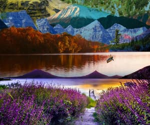 Collage, nature, and digital art image