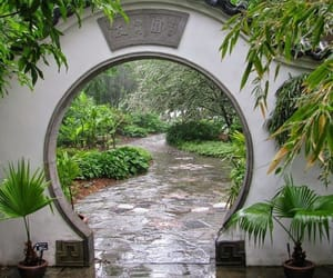 aesthetic, garden, and japan image