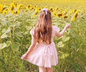 pink, sunflowers, and pink dress image