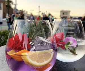 drink, flower, and fruit image