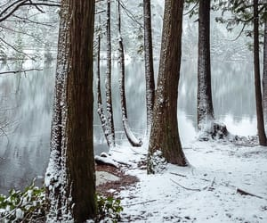 canada, snow, and landscape image
