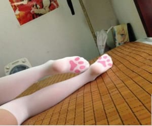 cat, socks, and pink image