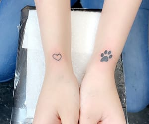 dog, ink, and paw image