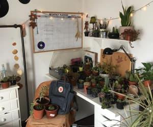plants, room, and alternative image