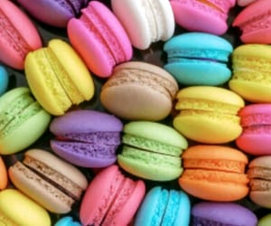 biscuits, colorful, and colors image