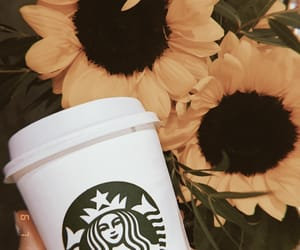 cappuccino, coffee, and starbucks image