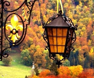 autumn, green, and beautiful image