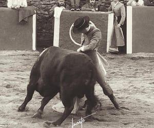 torero, toros, and españa image