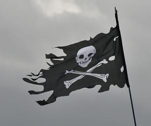 pirate, aesthetic, and flag image