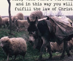 burden, quote, and bible image