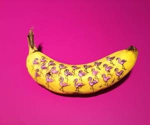 banana, pink, and flamingo image