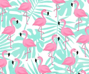 background, pink, and flamencos image