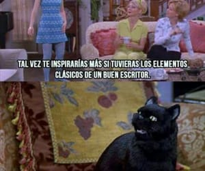 humor, sabrina, and salem image