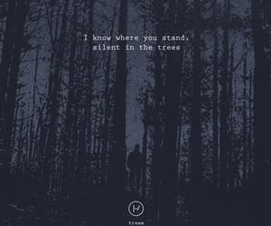 Lyrics, quotes, and trees image