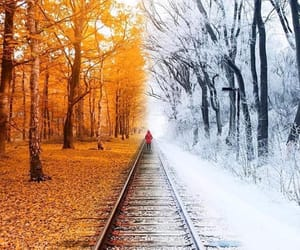 autumn, winter, and nature image