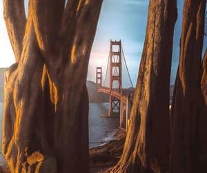 bridge, heart, and West image