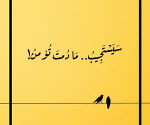 arabic, photography, and wallpaper image
