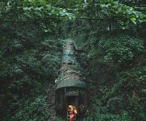 arboles, paisajes, and tren image