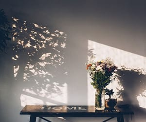 flowers, shadow, and home image