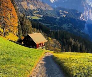 awesome, beautiful, and landscape image