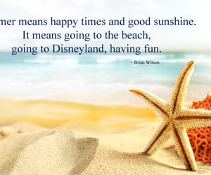 summer, summer sayings, and summer day quotes image