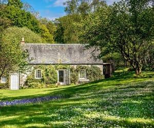 britain, british, and cottage image