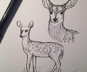 drawing, deer, and art image