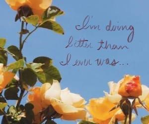flower, swiftie, and Lyrics image