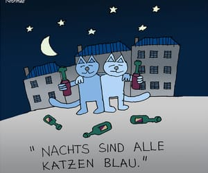 alcohol, alkohol, and cats image