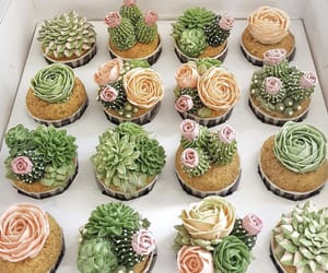 succulents, cactus, and cupcakes image