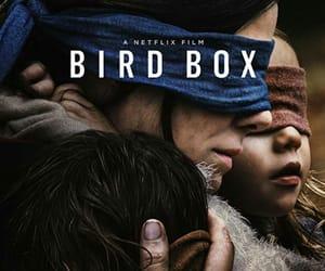movie, netflix, and bird box image