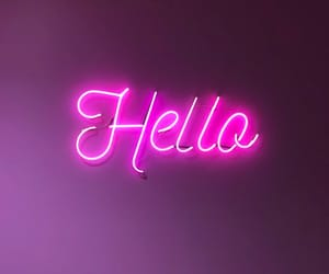 hello, light, and pink image