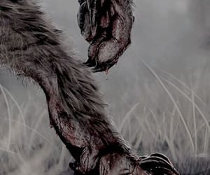 werewolf, blood, and wolf image