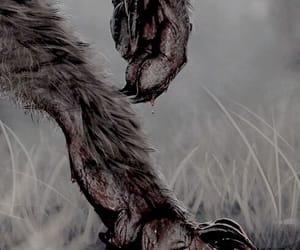 blood, werewolf, and wolf image